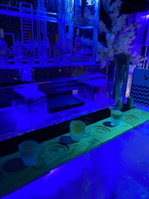 Shot glasses made of ice at the Ice Bar in STACK Newcastle in Jan 2020
